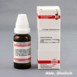 CRESOLUM D 6 Dilution 20 ml изображение
